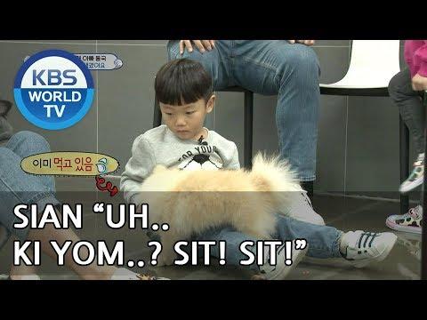 SIAN tries to teach Ki Yom to sit! [The Return of Superman/2018.12.23]
