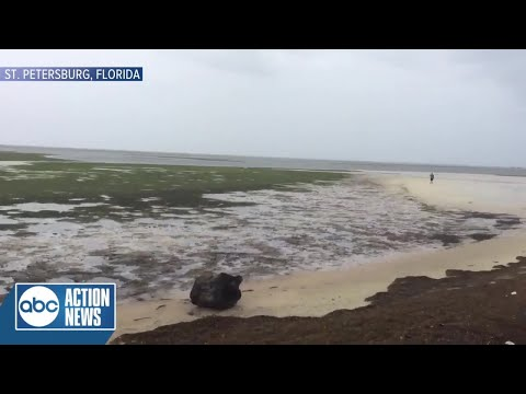 St. Pete Waterfront gone as Irma sucks water away from shore