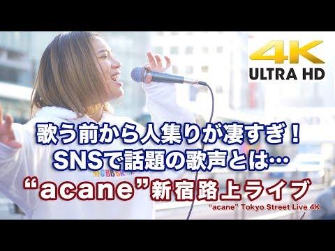 """【4K】2019.11.02  """"acane"""" 新宿路上ライブ 4K動画"""