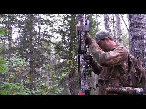 Outlaw Outdoors Alberta Monster Archery Bull Elk MONSTER ALBERTA ARCHERY BULL ELK