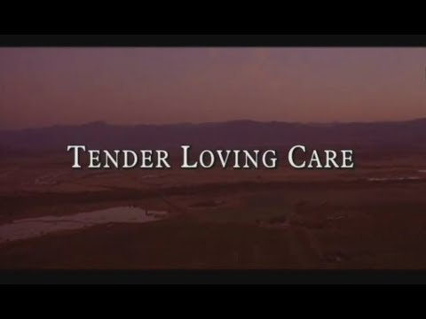 Tender Loving Care (video game) :: complete playthrough