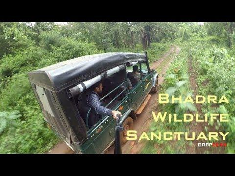 Bhadra Wildlife Sanctuary   MUTHODI   SAFARI   JEEP OFFROAD