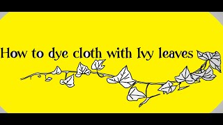 How to dye cloth with ivy leaves