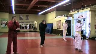 Going the Distance, from Rocky - Brown Belt, Pre Test - Summary -