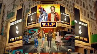 Skillibeng Ft Dicelebrityy - V.I.P | Official Audio | February 2021