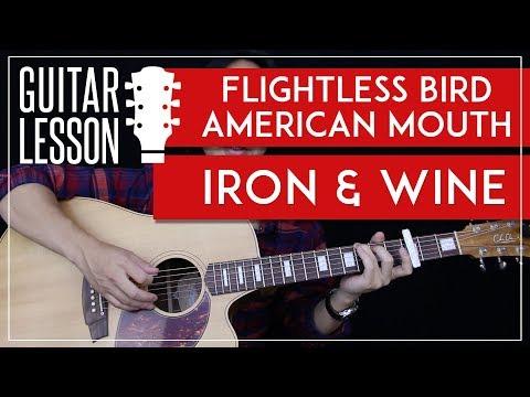 Flightless Bird American Mouth Guitar Tutorial - Iron & Wine Guitar Lesson 🎸 Chords + Guitar Cover 