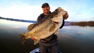 tim caught a 10 lber on a lipless crankbait