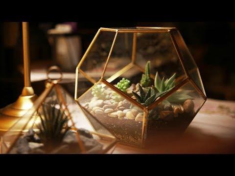 اصنع حديقة مصغرة  في منزلك التيراريوم DIY GEOMETRIC GLASS TERRARIUM