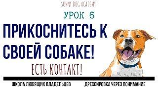 Упражнение на внимание собаки к хозяину. Марафон по дрессировке