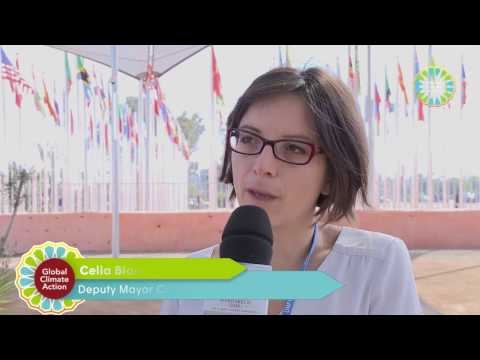 Global Climate Action on Transport at COP22