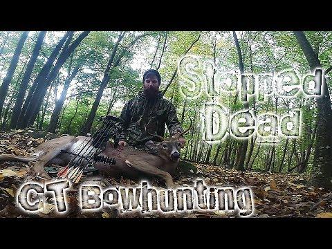 CT Bowhunting - Self Filmed Hunt - Buck Harvest
