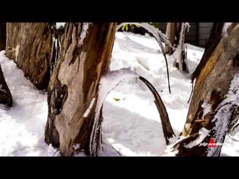 Đỉnh Tuyết - Một ngày tham quan ở Núi Tuyết.