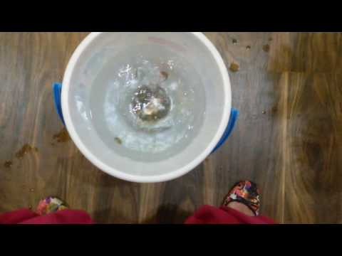Swimming coins(party game)😊