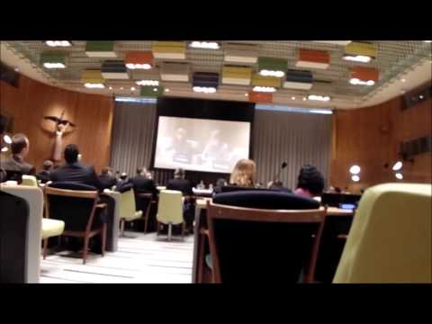 At UN, Crimea Meeting Deemed Closed; Press Allowed In, Filmed a Bit, Then Told to Leave