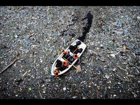 Download Youtube: plastic in the environment