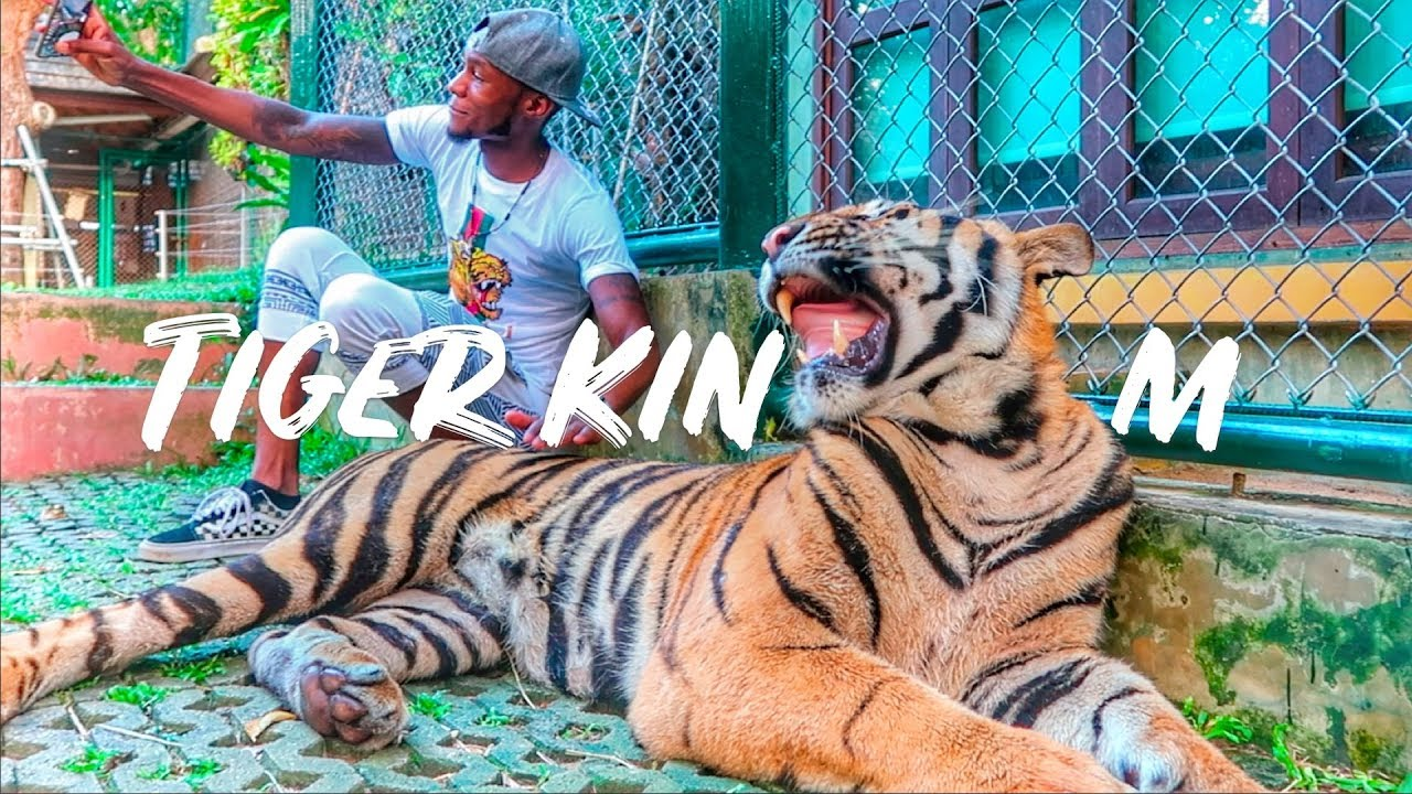 Visiting Tiger Kingdom Phuket | Thailand Travel 2019 (MUST WATCH*) | Travel Channel