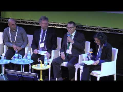 A Global Fuel Cell Technology Roadmap Panel - Fuel Cell and Hydrogen Symposium