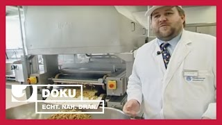 Currywurst und Kaviar - Köche im Großeinsatz | Experience - Die Reportage | kabel eins Doku