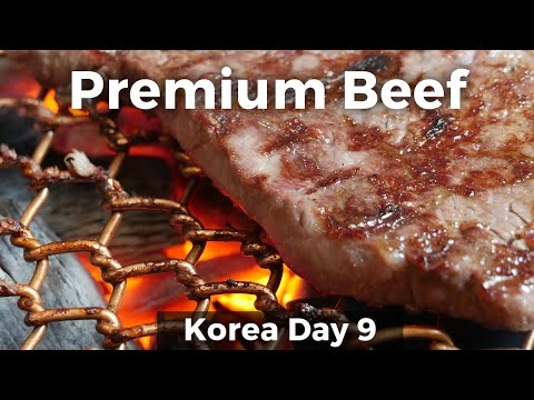 Korean Food - Premium Korean JANGSU BEEF! (Day 9)