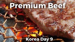Korean Food - Premium Korean JANGSU BEEF! (Day 9)