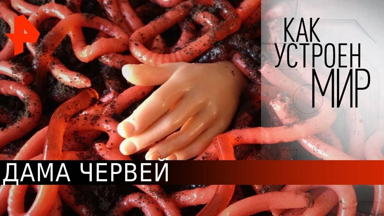 """Дама червей. «Как устроен мир"""" с Тимофеем Баженовым (22.06.20)."""