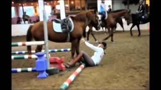 Думаешь конный спорт это легко? Тогда смотри!