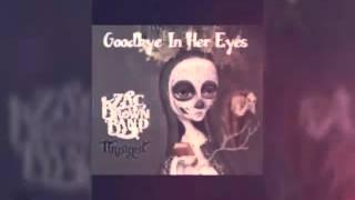 goodbye in her eyes-Zac brown band lyrics