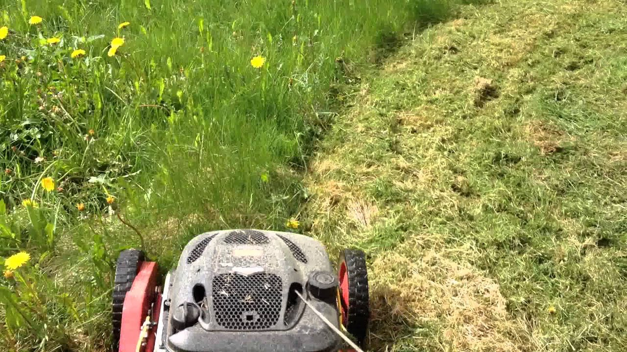Klippo Lawn Mower Long Grass Cutting Doovi