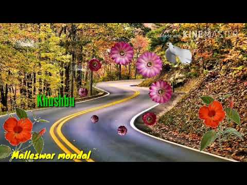 Parchhi sur mein gaate hain song // Romantic song // surf tum movie song // udit narayan song //