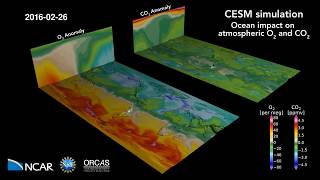 CESM Simulation: Ocean impact on atmospheric oxygen and carbon dioxide
