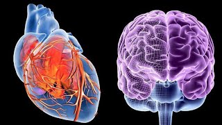 E-Motion = energy in motion; How we manifest reality through the heart brain connection.