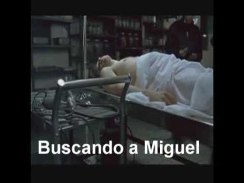 Buscando a Miguel (Film)