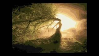 CELTIC WOMAN - The Voice (KARAOKE)