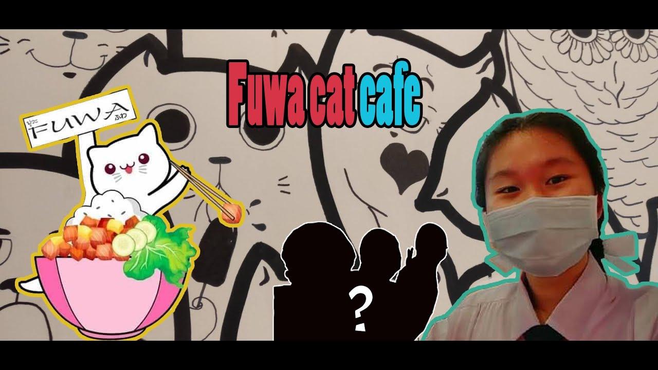 VLOG EP6: Fuwa cat cafe 1วันกับคาเฟ่แมวและผองเพื่อน