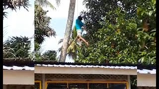 remaja nyaris maut leher terbelit tergantung di pokok kelapa