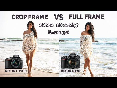 Full Frame Vs APS-C Crop Sensor DSLR In Sinhala Sri Lanka (වෙනස සහ විස්තර සිංහලෙන්)