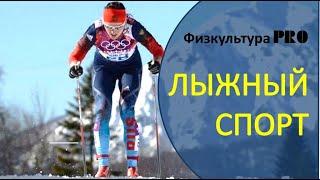 Лыжный спорт. Категории, разновидности и направления. Классификация видов лыжного спорта#лыжныйспорт