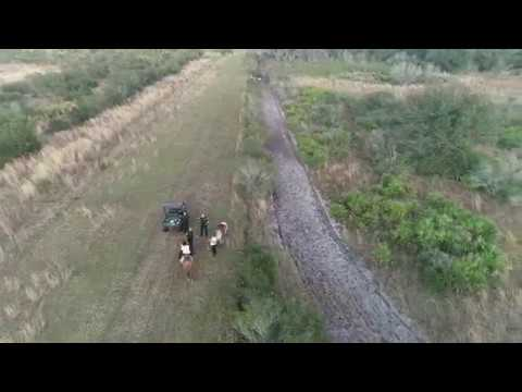 Drone Used To Find Lost Horseback Riders In Manatee County