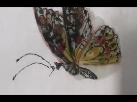 国佐示范画蝴蝶 Chinese painting, how to paint butterflies