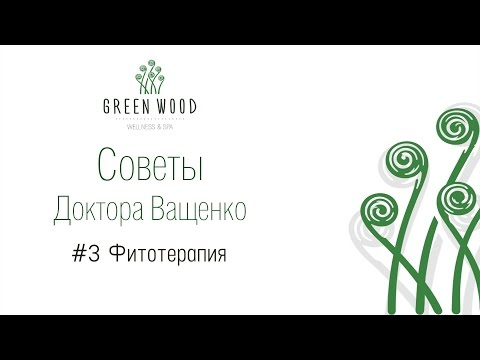 Фитотерапия | Фитотерапия в GreenWood wellness&SPA | Советы Доктора Ващенко