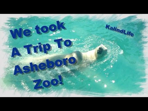 A Trip to the Asheboro North Carolina Zoo!
