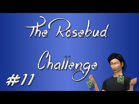 The Rosebud Challenge #11 - We Don't Need No Stinkin' Jobs!