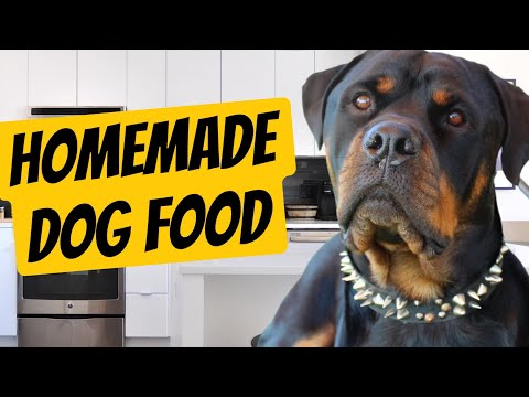 Rottweilers Homemade Dog food