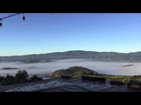 Napa Valley Morning Fog