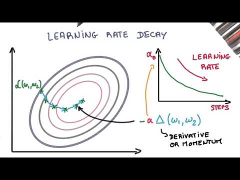 Momentum and Learning Rate Decay