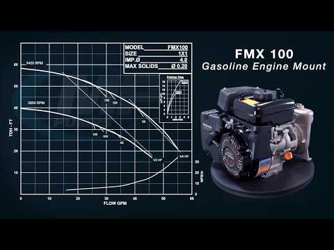 Introducing the FMX 100!