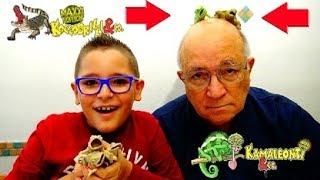 ATTENTO AL COCCODRILLO! - KOCCODRILLI E KAMALEONTI & CO. - Leo Toys
