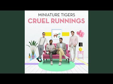 miniature tigers dream girl