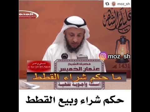 الشيخ عثمان الخميس حكم شراء و بيع القطط Youtube