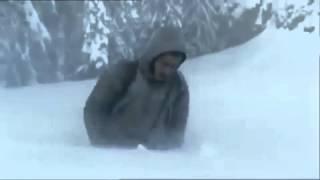 მგლები ამ ვიდეომ შეძრა მსოფლიო   Mglebi Am Videom Shedzra Msoflio